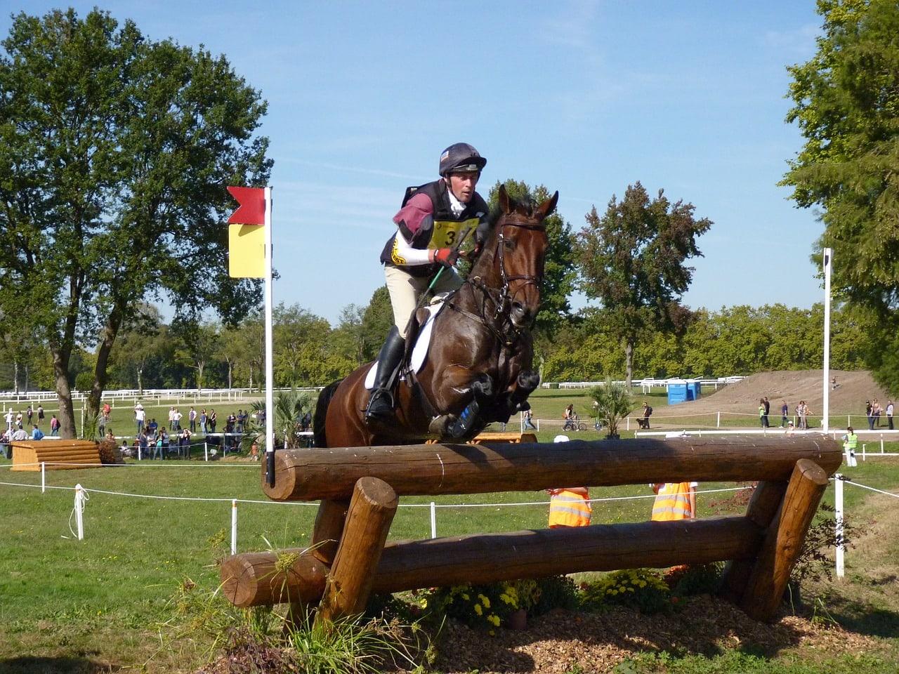 eventing horseback riding