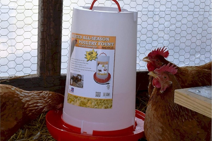 heated poultry fountain