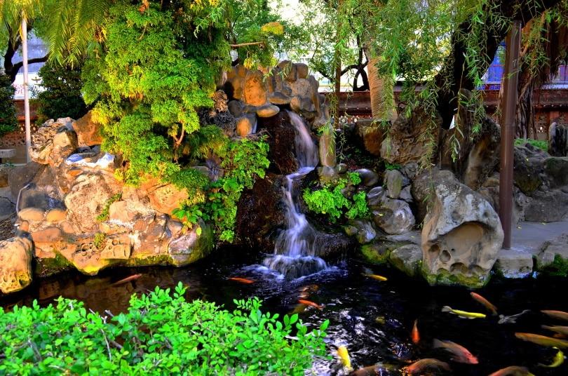 koi fish pond water fall