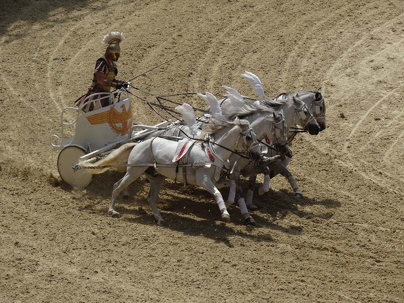 horse race chariot