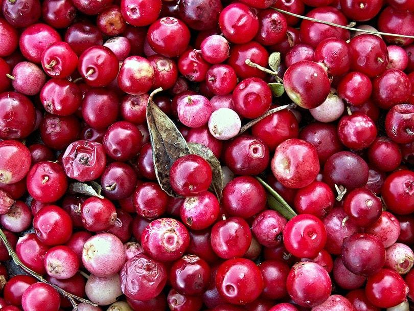 साबुत क्रैनबेरी